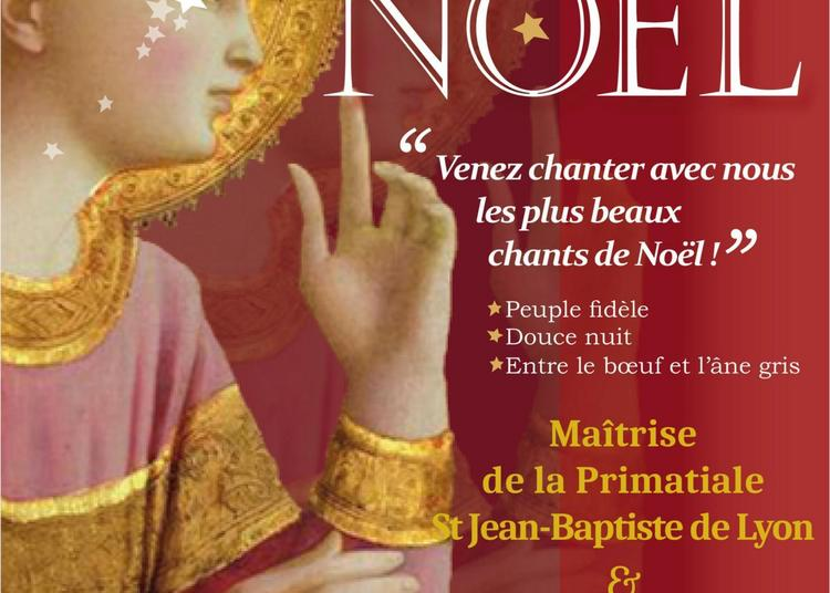Petits Chanteurs de Lyon - Concert de Noël