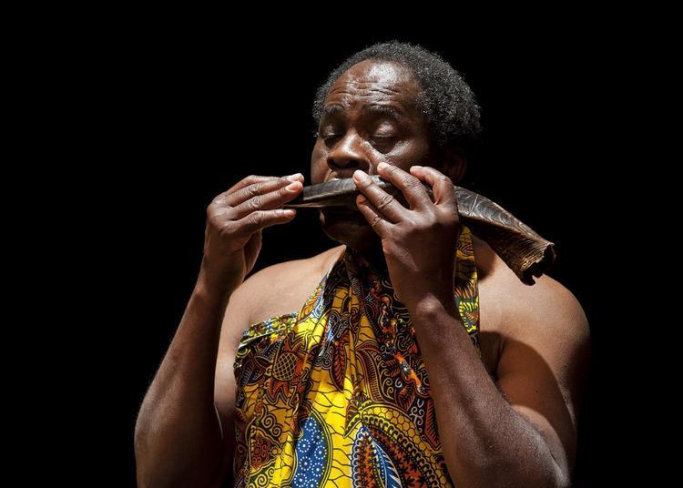 Africa 2020 - Conte et musique « Paroles de baobab » à Boissy saint Leger