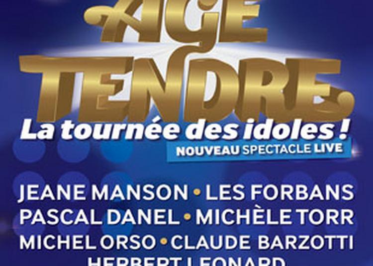 Age Tendre-La Tournee Des Idoles ! à Montlucon