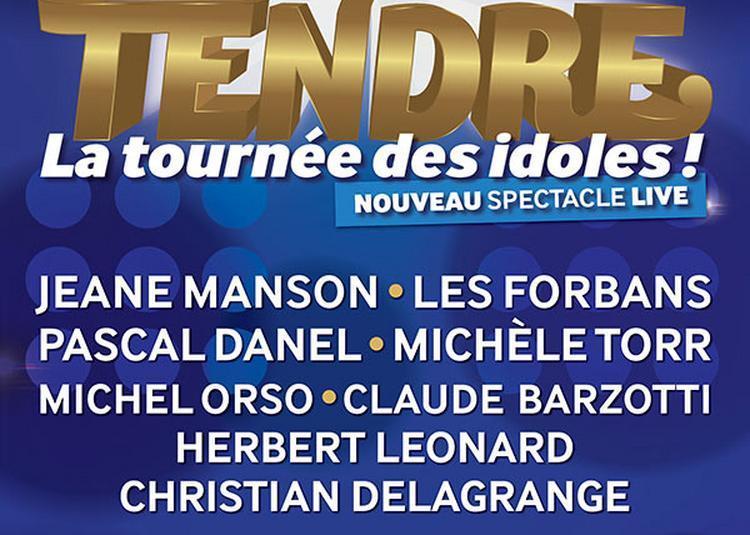 Age Tendre-La Tournee Des Idoles ! à Cesson Sevigne