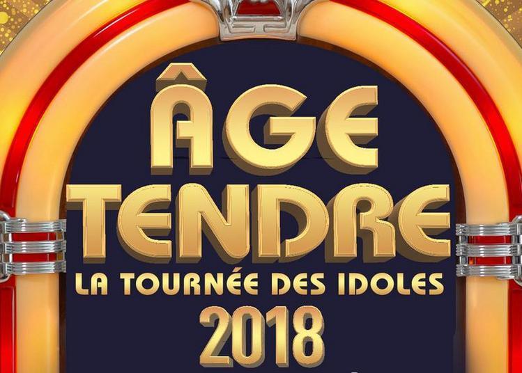 Age Tendre - La Tournee Des Idoles ! à Rouen