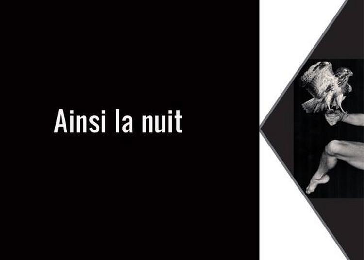 Ainsi La Nuit - Pour danseurs, loup, chouettes et vautours à Reims