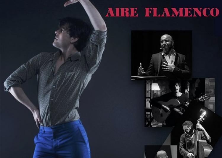 Aire Flamenco à Paris 19ème