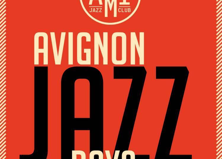 Animal à Avignon