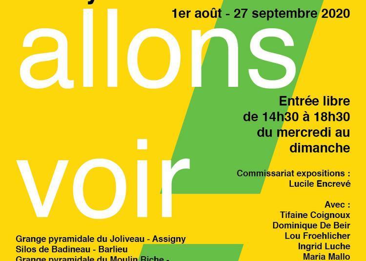 Allons voir ! parcours d'art contemporain en pays fort à Vailly sur Sauldre