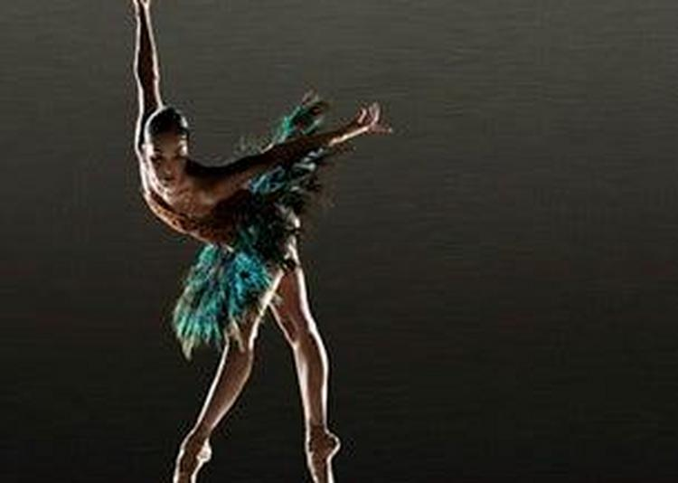 Alonzo King Lines Ballet à Cannes