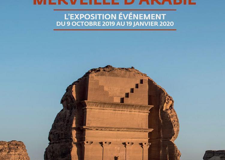 Alula. Merveille d'Arabie - L'oasis aux 7000 ans d'histoire à Paris 5ème