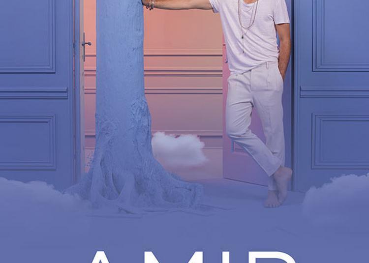 Amir - Retour - Report à Limoges