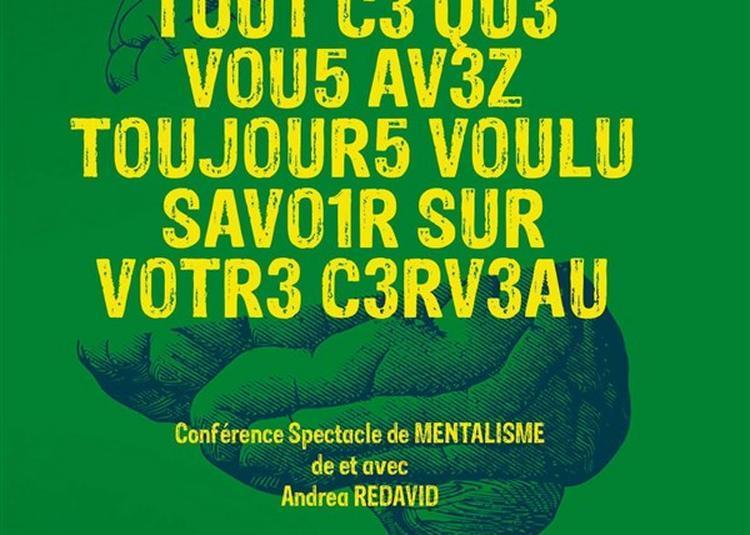 Andréa Redavid Dans Tout Ce Que Vous Avez Toujours Voulu Savoir Sur Votre Cerveau à Merignac