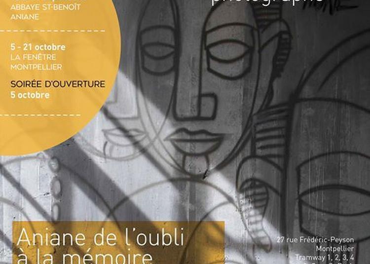 Aniane de l'oubli à la mémoire, de l'abandon à la revanche à Montpellier