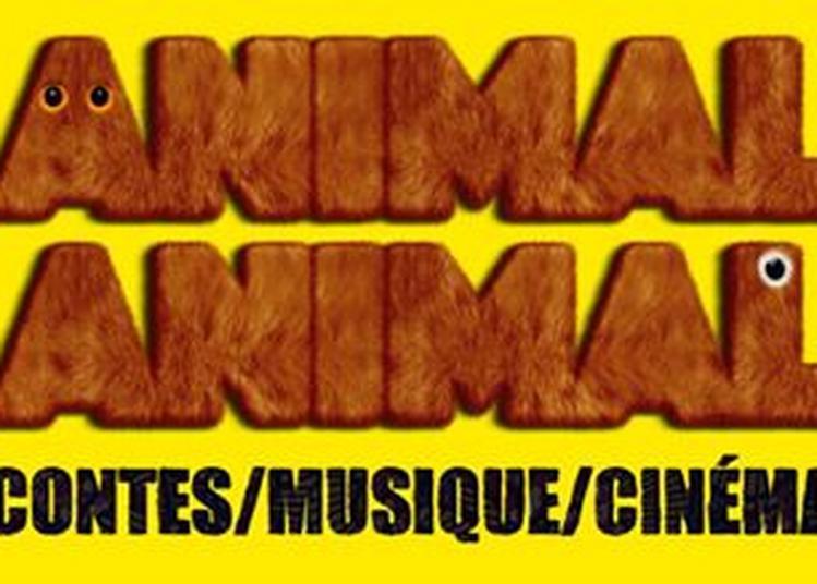 Animal Animal à Angers
