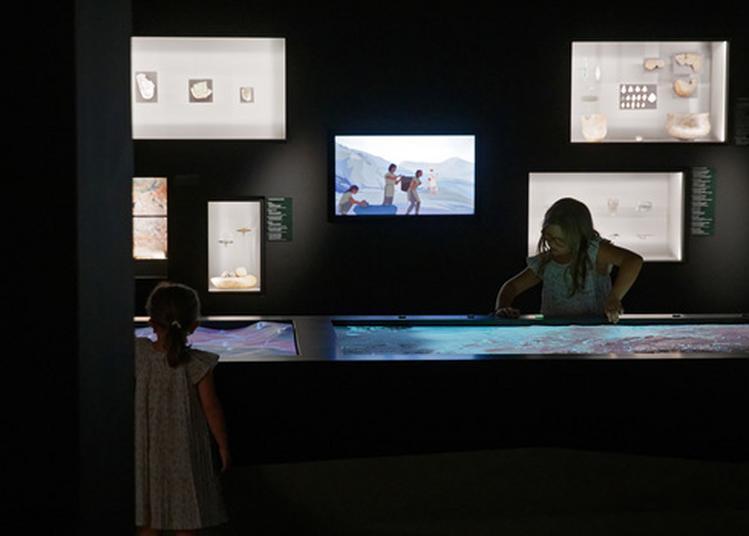 Animation Des Fossiles à La Lampe De Poche à Lodeve
