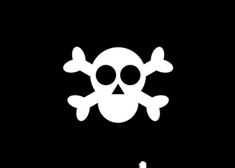 Animation Jeune Public : Atelier Piraterie à Caudebec en Caux