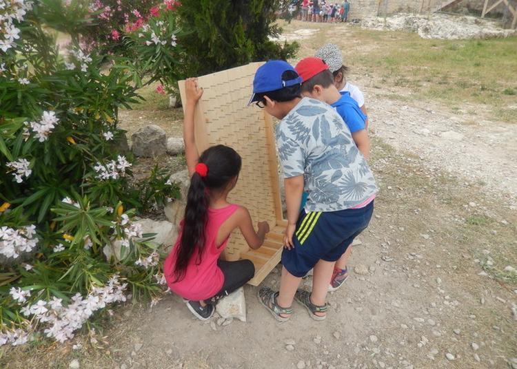 Animation Jeune Public Jeux En Bois à Beaucaire