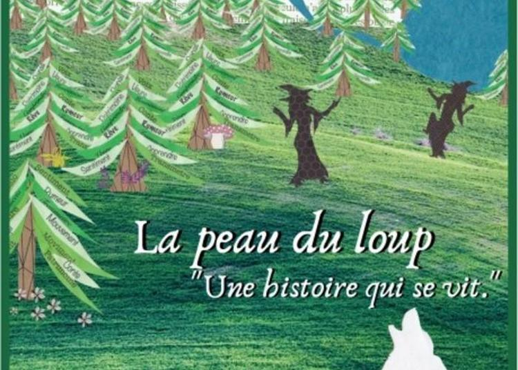 Animation Pour Scolaires / Levez Les Yeux ! Spectacle Conté Et Chorégraphié à Sainte Leocadie