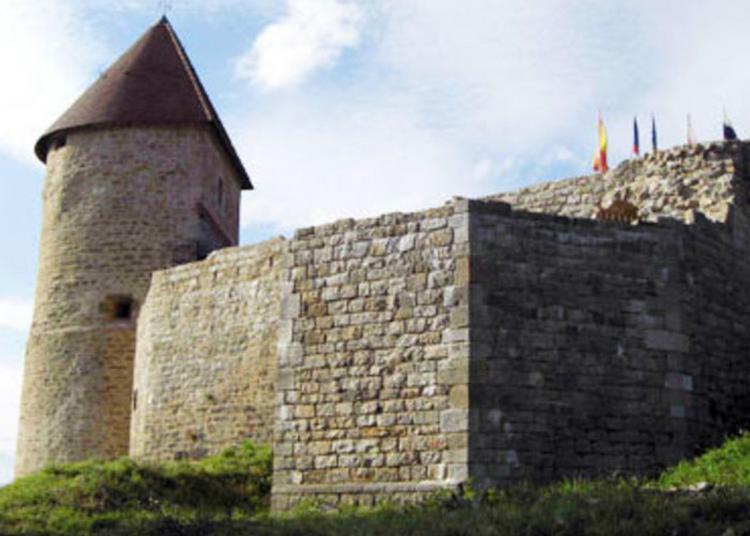 Animations Au Château De Chevreaux