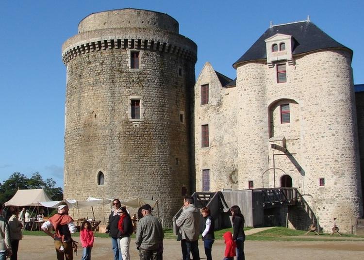 Animations Au Château De Saint-mesmin à Saint Andre sur Sevre