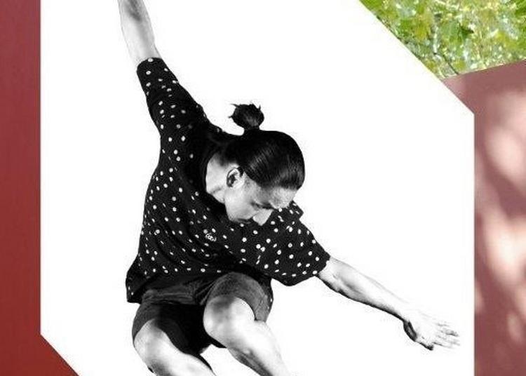 Anne Nguyen / Compagnie Par Terre - Kata à Paris 16ème