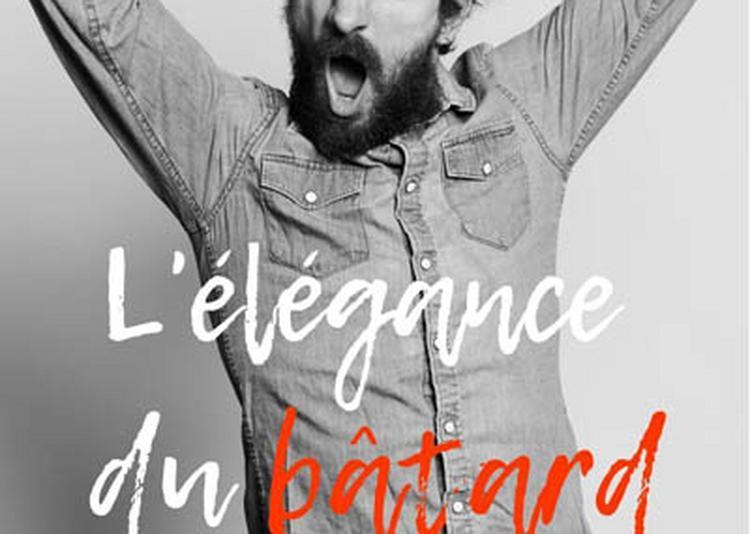 Antoine Lucciardi - L'élégance du bâtard à Rennes