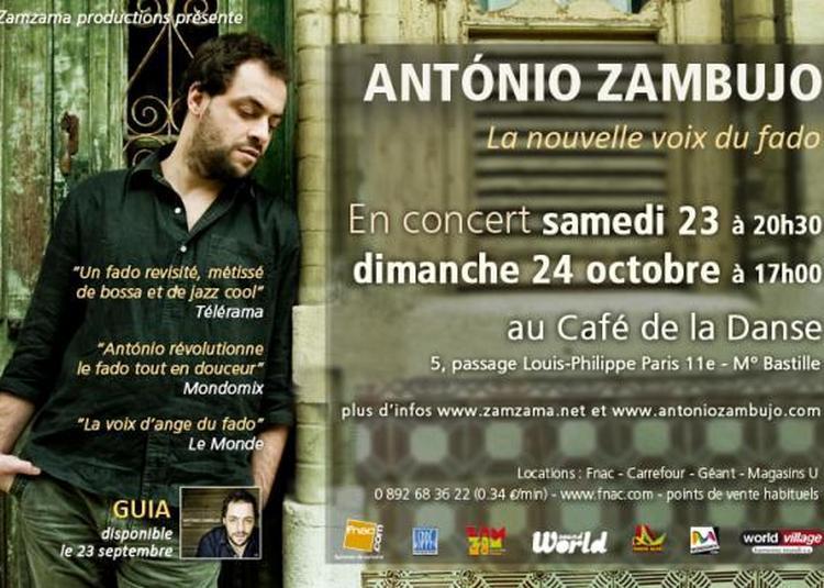Antonio Zambujo à Saint Martin des Champs