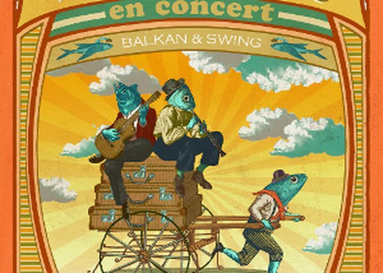 Apéro concert - Paul Miles et Les Poissons Voyageurs à Macon