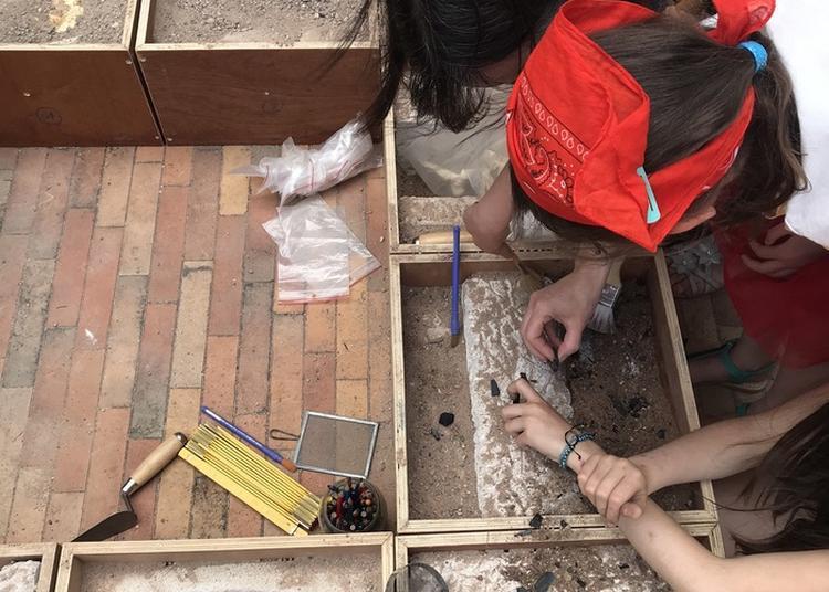 Apprentis Archéologues à Chalons en Champagne