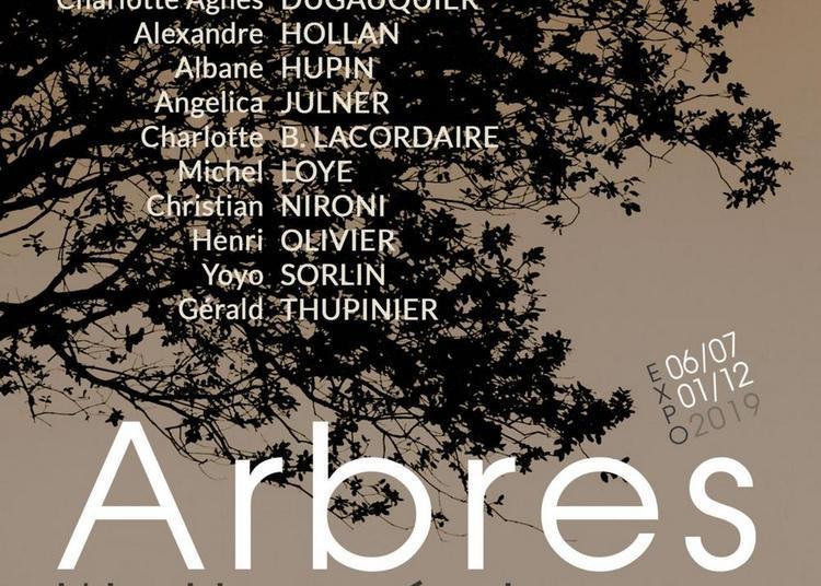Arbres, l'intime échange à Chateauvert
