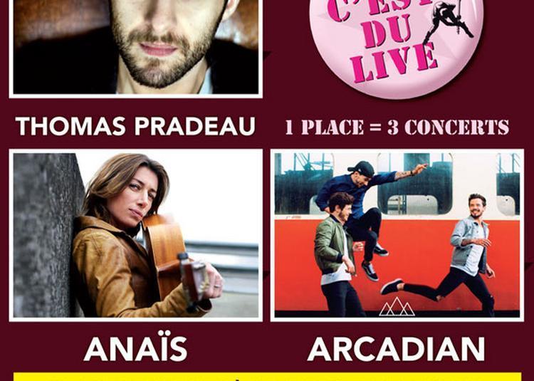 Arcadian + Anais à Vert le Petit