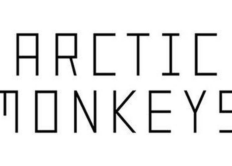 Arctic Monkeys à Lyon