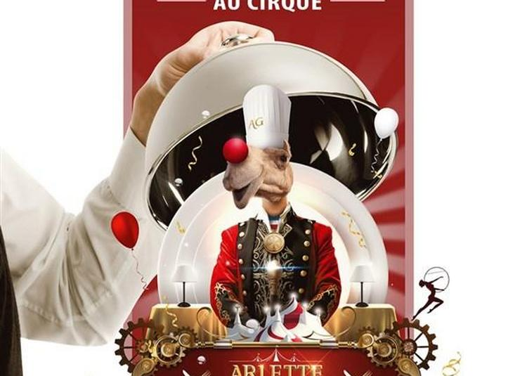 Arlette Gruss Diner Spectacle à Amiens