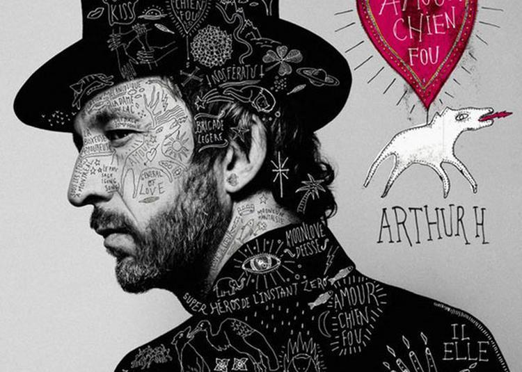 Arthur H à Romans sur Isere