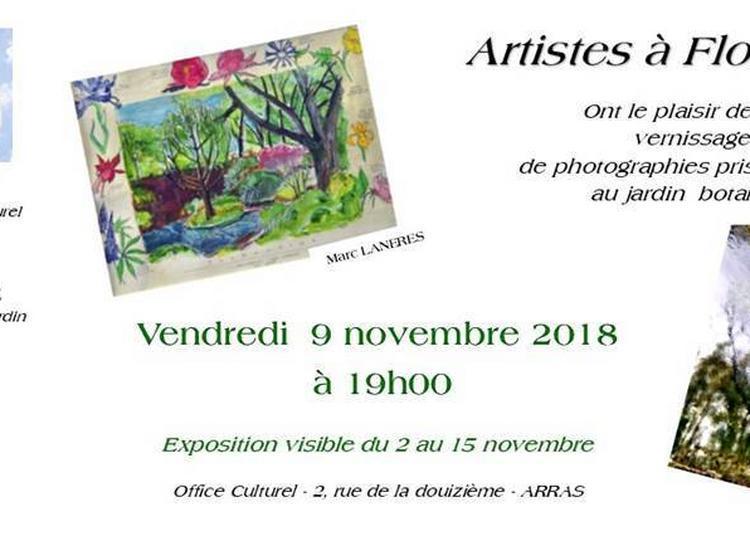 Artistes À Floralpina Ajaboflora Office Culturel Arras