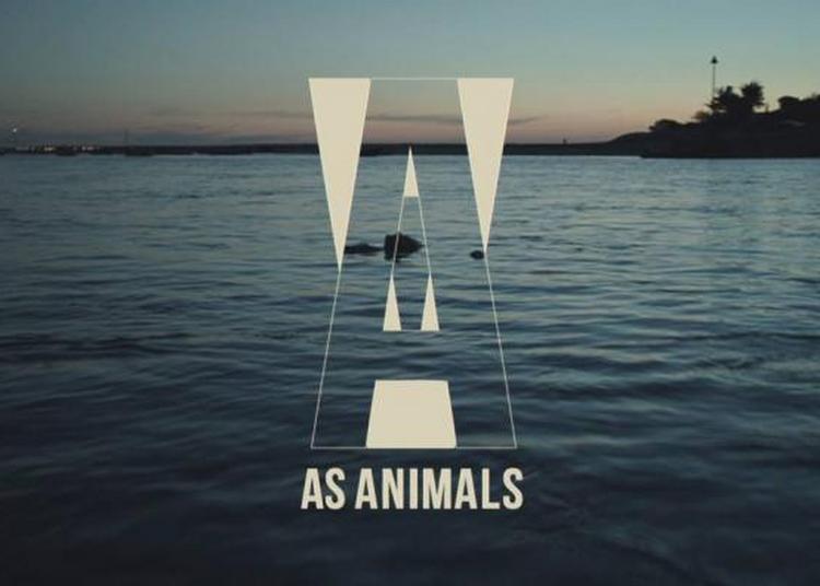 As Animals à Paris 20ème