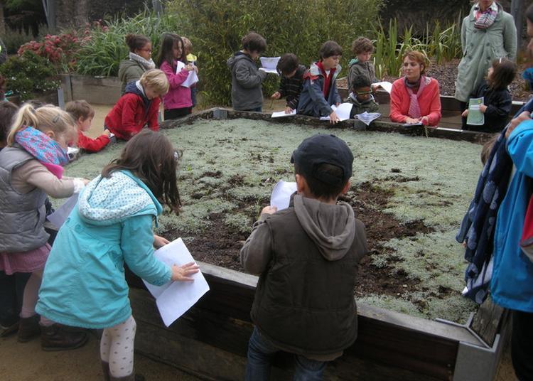 Atelier-balade Au Jardin Des Explorateurs à Brest