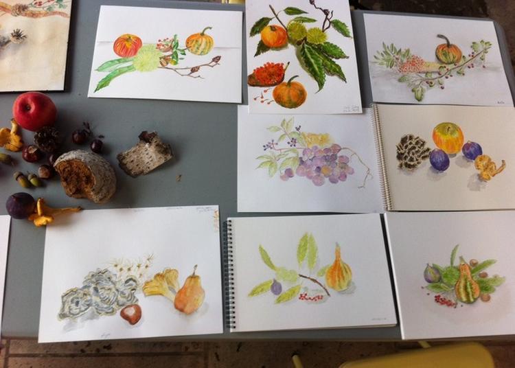 Atelier De Découverte Du Dessin Et De L'aquarelle Botanique à Chatenay Malabry