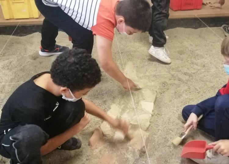 Atelier Fouilles : Deviens Un Vrai Archéologue ! à Castres