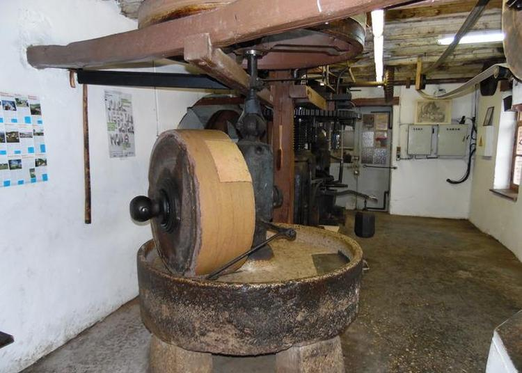 Atelier «abrication De L'huile De Noix Et Noisettes». à Neuville sur Ain