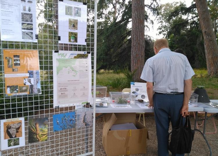 Atelier Lutte Biologique Pour La Protection Des Espaces Arborés à Antibes