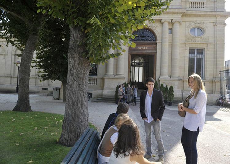 Ateliers Enfants Au Musée Des Beaux-arts Et À La Galerie Des Beaux-arts à Bordeaux