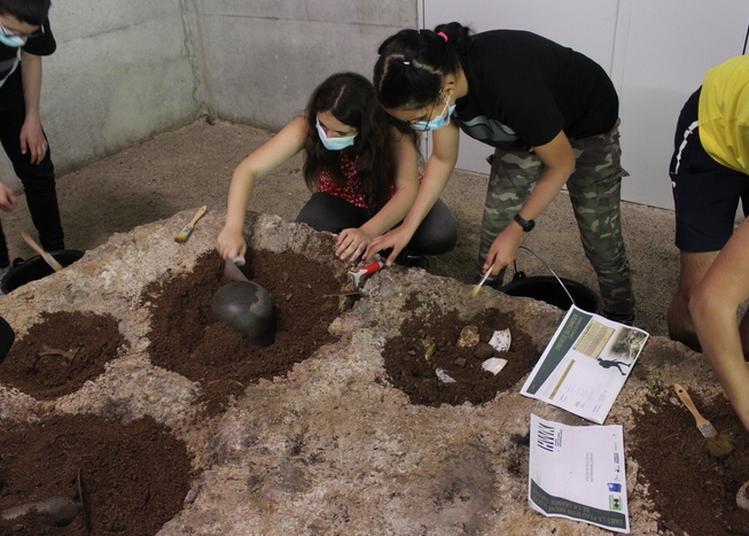 Ateliers Jeune Public Autour De L'archéologie De La Grande Guerre à Wattwiller