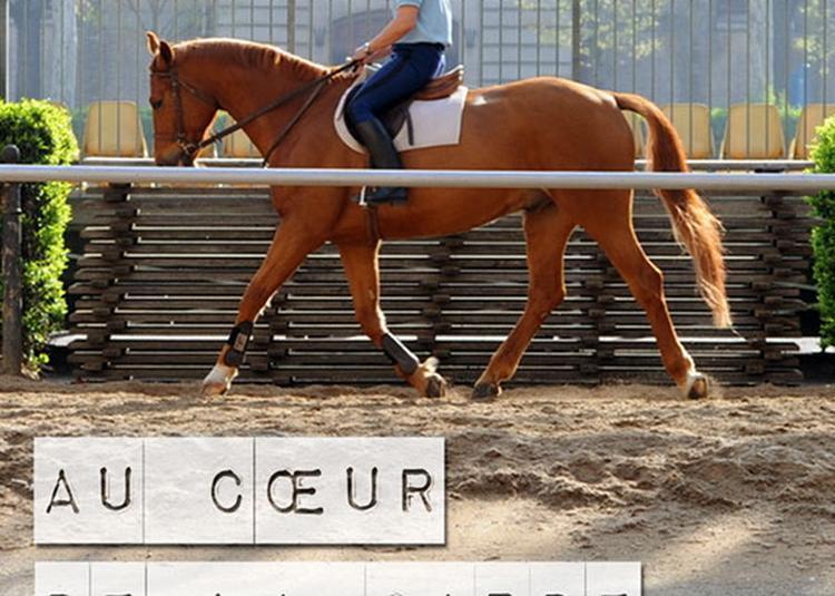 Au Coeur De La Cavalerie à Paris 4ème