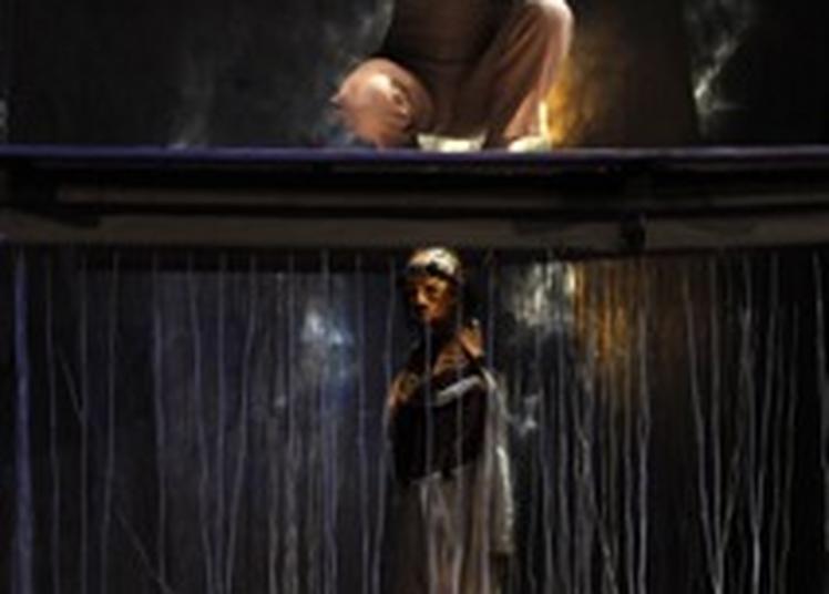Au Fil D'OEdipe - Théâtre Et Marionnettes à Ris Orangis