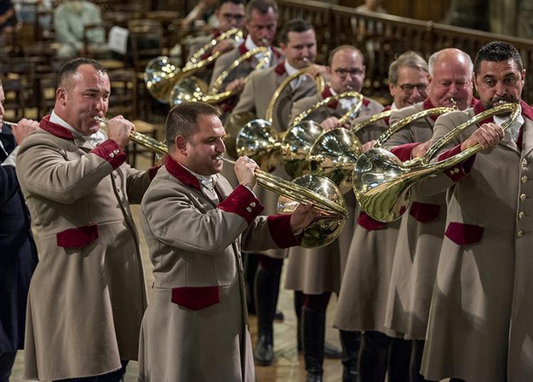 Aubade De Trompe Musicale à Paris 7ème