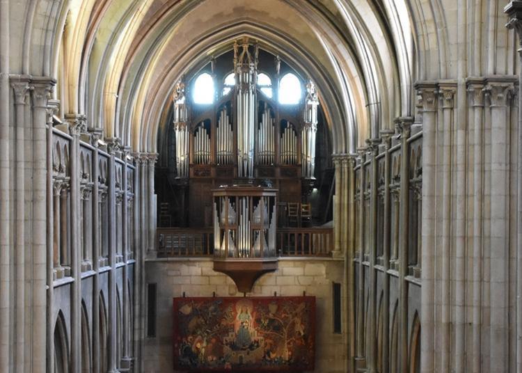 Audition D'orgue à L'église Notre-dame De Dijon