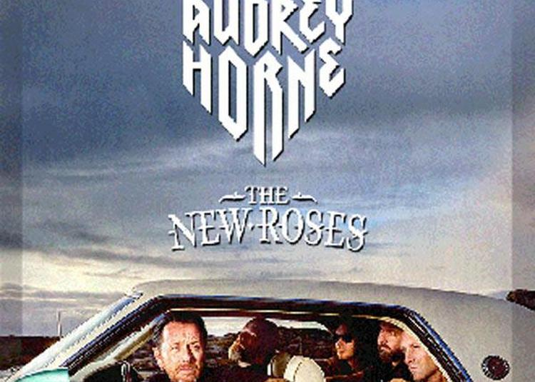 Audrey Horne + The New Roses à Strasbourg