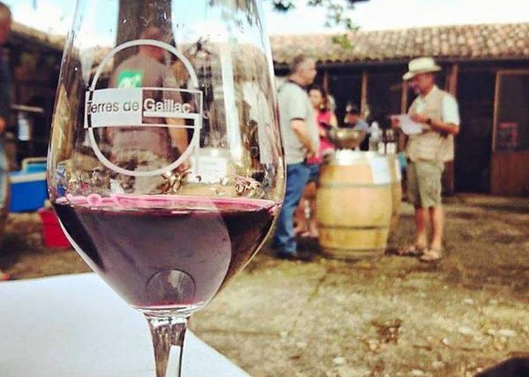 Autour d'un verre - Visite et dégustation en compagnie des vignerons de Terres de Gaillac à Albi