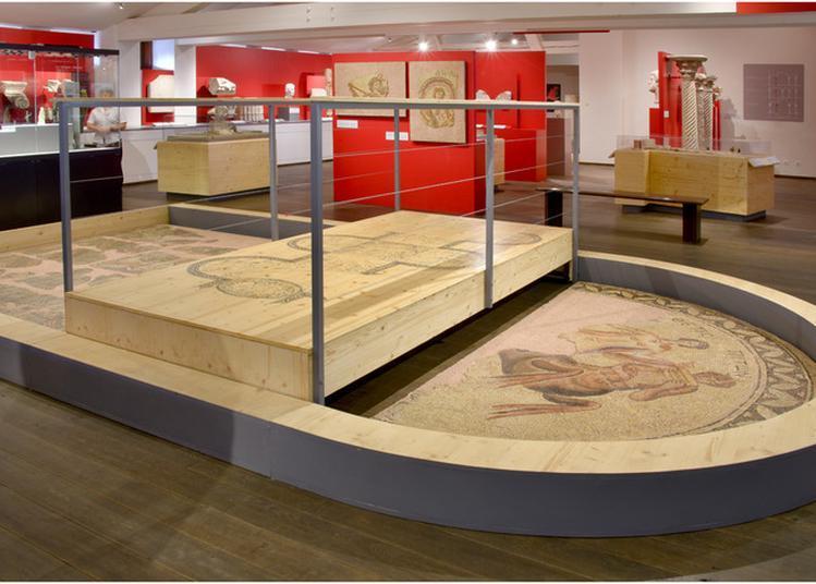 Ave ! Un Expert À Votre Écoute Dans Les Collections Du 2e Étage Du Musée Saint-raymond, Musée Des Antiques De Toulouse