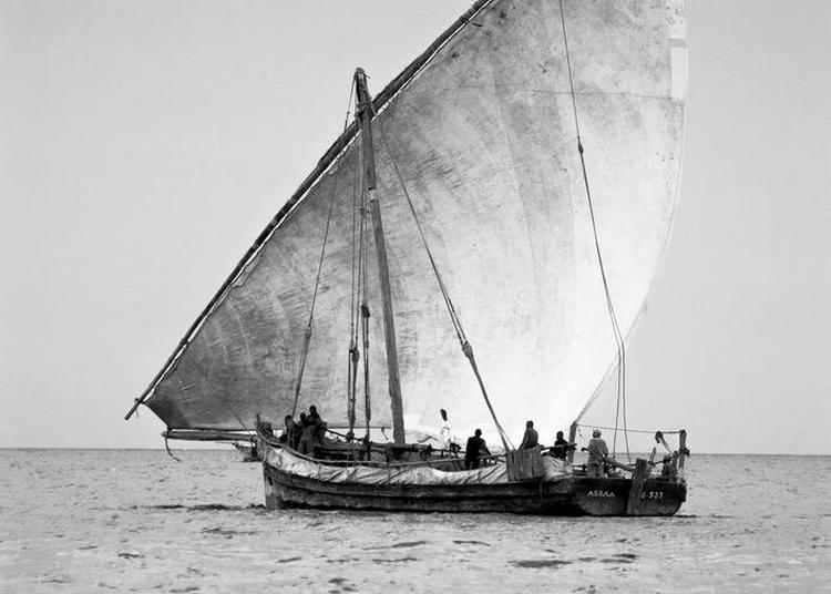 Aventuriers Des Mers à Marseille