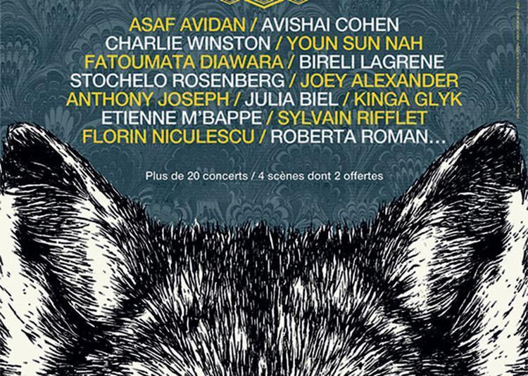 Avishai Cohen - Charlie Winston à Wolfisheim