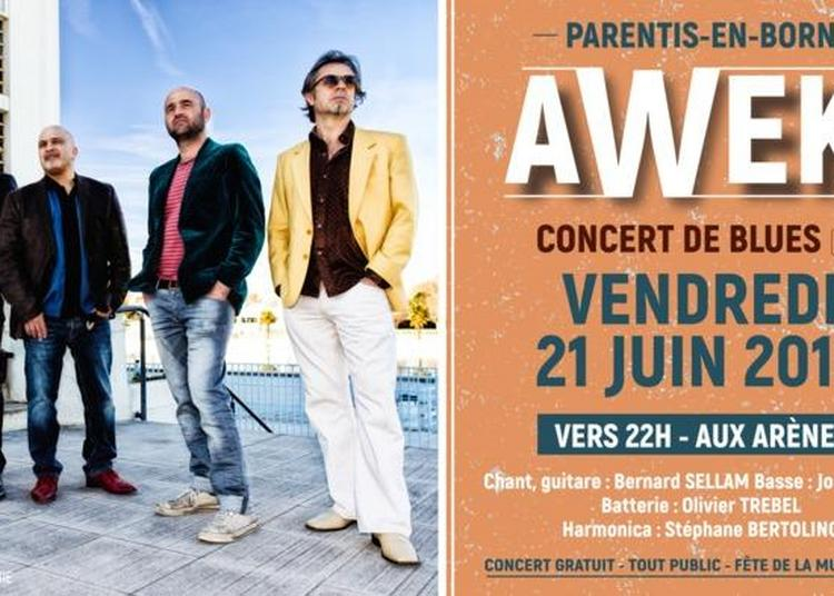 Awek Blues - Le Groupe De Blues Toulousain à Parentis en Born